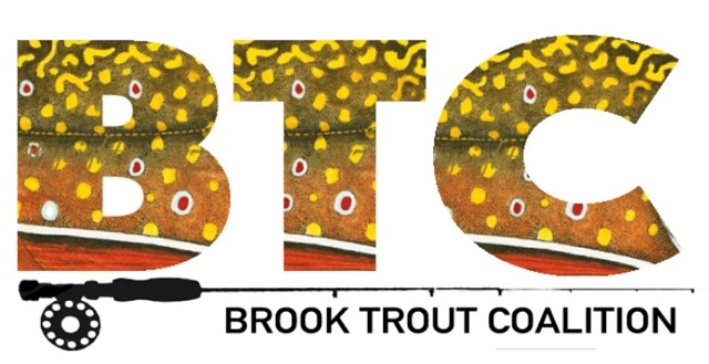 The Brook Trout Coalition congratulates the Boardman River Clean Sweep for preserving the Boardman River for 15 years.